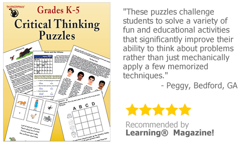 Critical Thinking Puzzles eBook